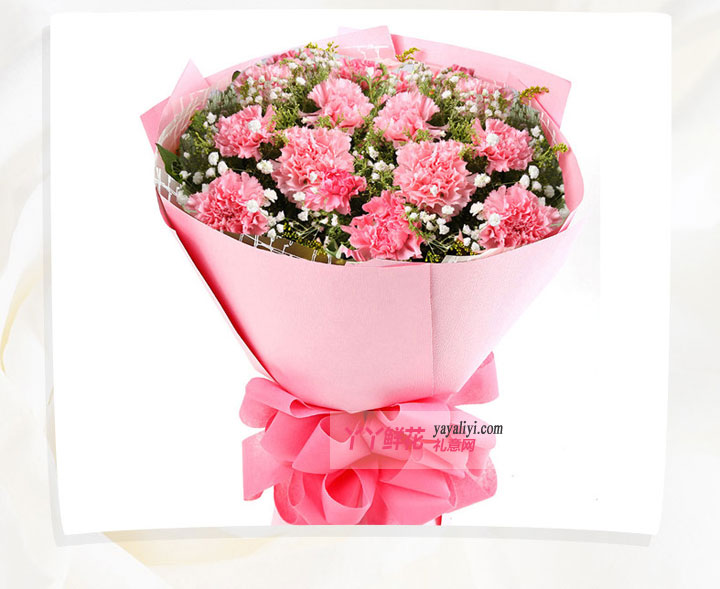 鲜花11支粉色康乃馨(挚爱一生)大图