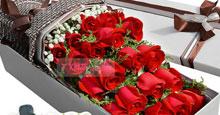 520情人节鲜花速递21枝红玫瑰2小熊礼盒(缘定三生)