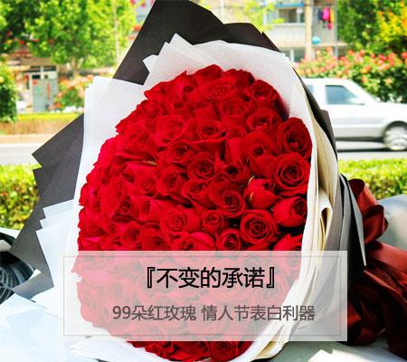 情人节表白利器-99枝红玫瑰鲜花