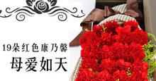 母亲节19枝红色康乃馨礼盒鲜花速递(长青)