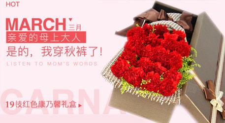 三八妇女节长青:19枝红色康乃馨礼盒鲜花速递