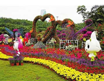 深圳:公园文化周花簕杜鹃展欢乐开启