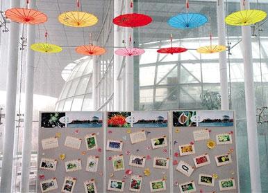 2017年郑州植物园迎春花展开幕 每天限流3000人