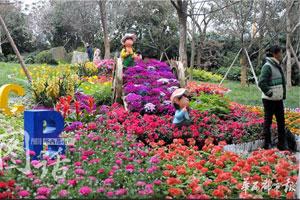 40万盆鲜花免费看 成都春天可能在这里