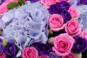 杭州鲜花节昨天开始啦!50束百合送给亲爱的你
