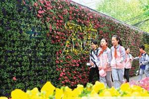 西安碑林 鲜花景观墙 扮靓街区