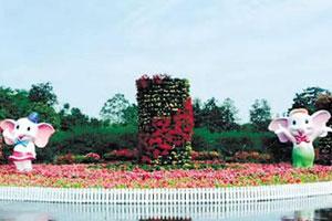5万盆鲜花装点长沙市内公园