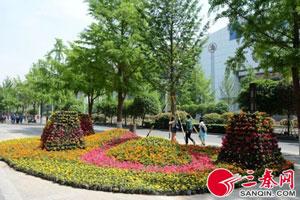 西安迎接五一劳动节 鲜花扮靓长安城
