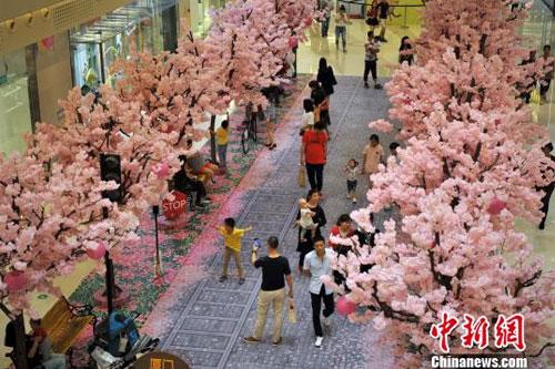 厦门商场再现樱花盛开美景