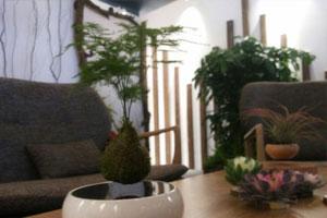 悬浮花盆亮相 北京世园会展示活动