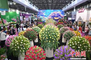 全球奇花异草上海争艳 花卉行业前景看好