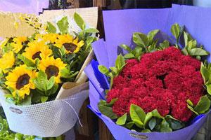 重庆母亲节鲜花价格普遍抬头 康乃馨价格今日上涨近3倍