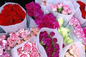 南宁花市生意火爆 母亲节鲜花价格也上涨近一倍