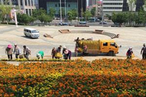 烟台文化中心摆12万余盆鲜花迎