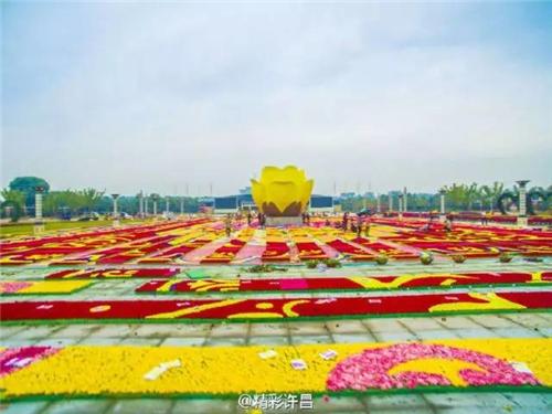 """许昌积极申办2021年中国花卉界的""""奥林匹克"""""""