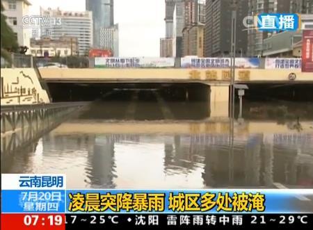 云南:暴雨连连,全省约2000亩花卉遭水灾