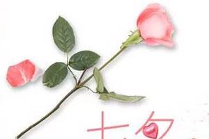 """""""七夕""""将至 唐山浪漫经济升温"""
