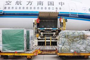 七夕拉动鲜花运输高峰 南航广州日均出港量近9吨