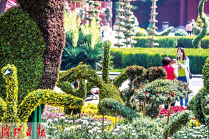 喜迎双节和盛会 60多万盆鲜花扮靓装点洛阳城