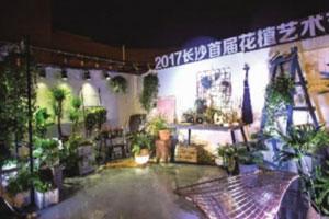 长沙首届花植艺术节开幕 即日起至27日,市民可免费观赏