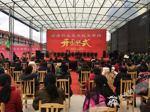南川:渝南黔北最大花木批发市场今日开园
