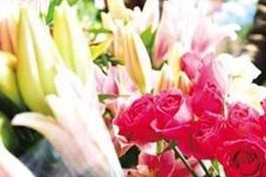 天津鲜花价格降幅大 现在买花更实惠