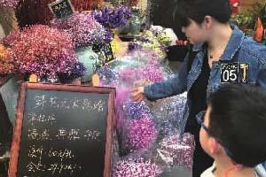 """""""三八节""""将至,长沙鲜花预订升温 年宵花价格开始促销"""